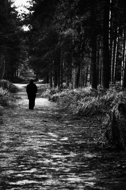 black and white, distance, forest, girl, lonely