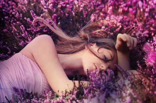 brunette, flowers, girl, lavender, pink