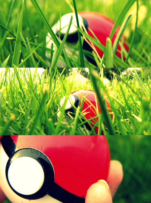 grass, poke ball, pokemon
