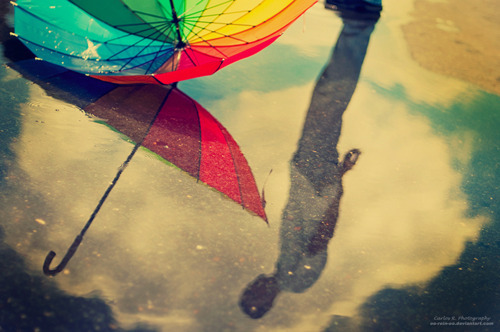 rain, rainbow, reflection, umbrella