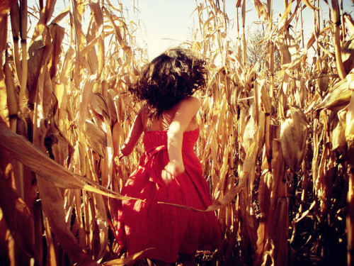 away, field, girl, red dress, running