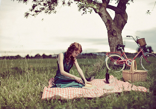 bicycle, girl, picnic