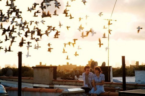 birds, couple, cute, love, roof, rooftop
