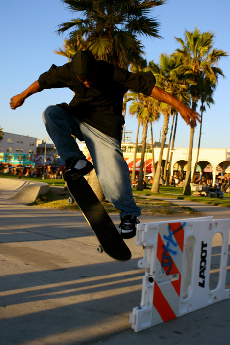 california, palm trees, skate, skateboard, venice beach