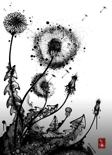 dandilion, flowers, weeds, wish flower