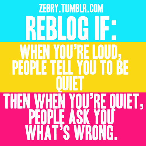 loud, quiet, so true