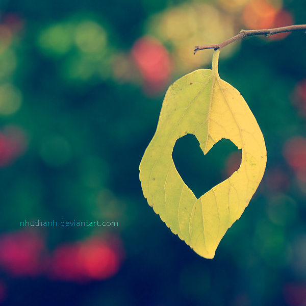 autumn, deviantart, heart, leaf, yellow