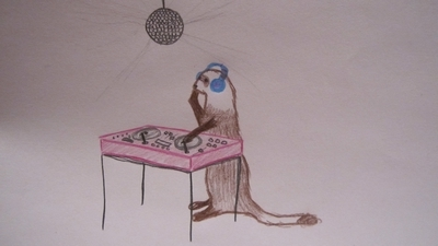awesome, awkward, cute, disco, drawing, ferret, lol, music