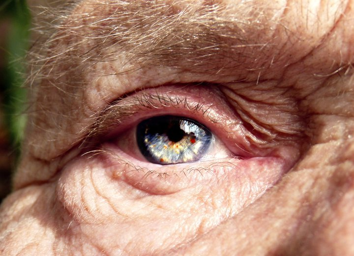 beautiful, blue, eye, grandma, photography