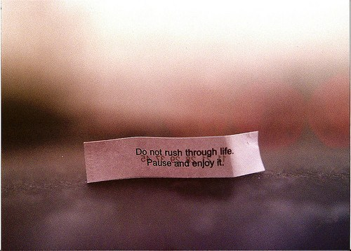 chinese, chinese food, cookies, food, fortune