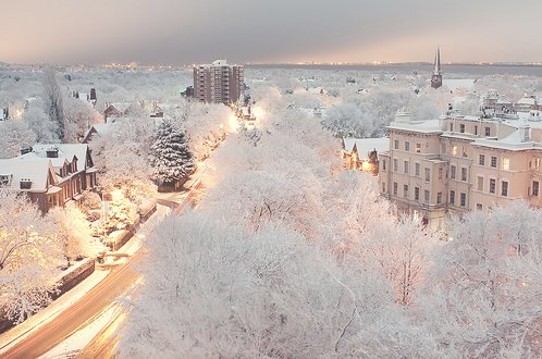 christmas, city, lights, photography, pretty, snow, trees, winter