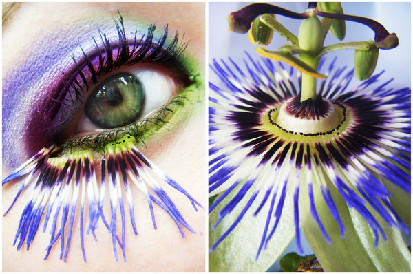 colorful, cool, eyes, flower, make-up