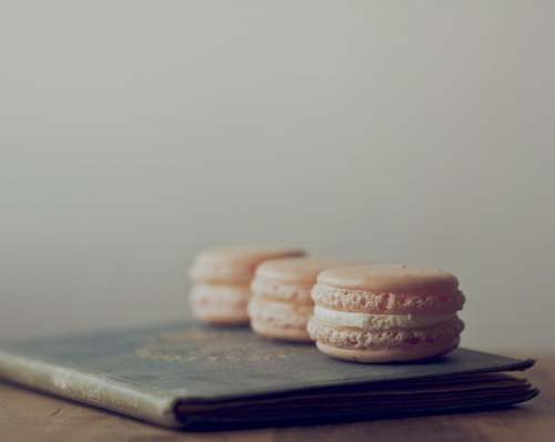 cute, food, macarons, macaroons, not macaroons, photography, vintage