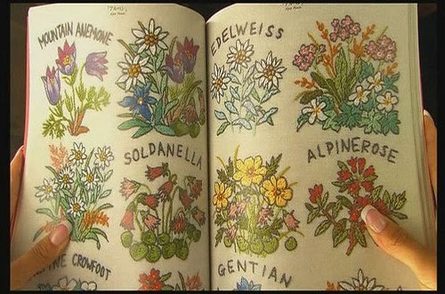 book, flowers, herbs, vintage