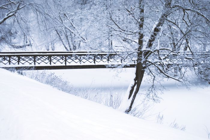 bridge, disarmmynightmares, snow, tree, white