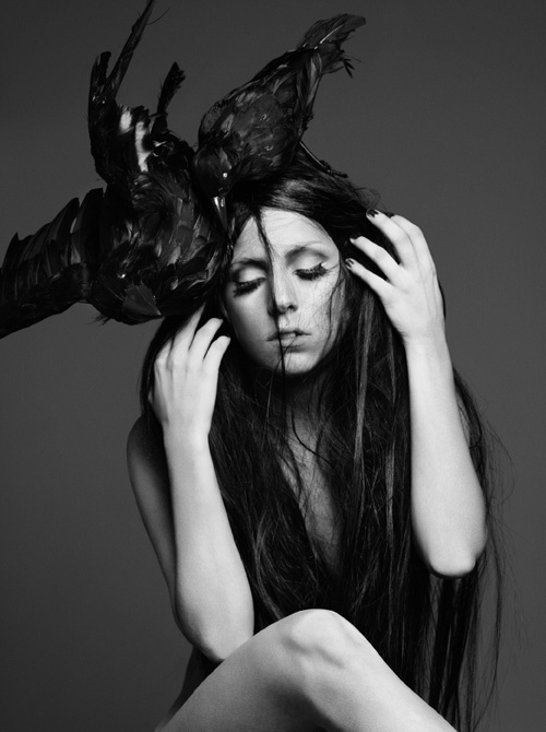 black and white, lady gaga, monster, tfm - image #168309 ...