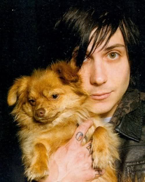 cute, dog, frank iero, my cehmical romance, my chemical romance