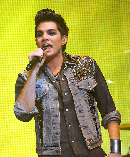 adam lambert, american idol, cute, glambert, lovely, yellow