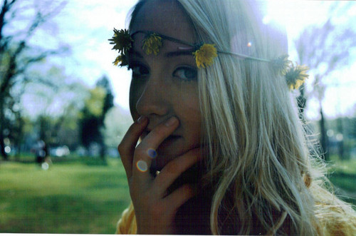 blonde, blue, crown, daffodils, day