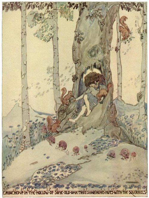 child, fairy tale, forest, illustration, mushroom, squirrel, tree