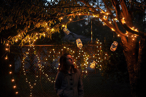 lantern, party, tree, twinkle lights, yellow