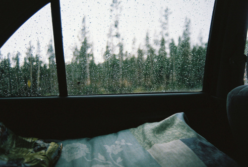 light, photography, rain, room, trees